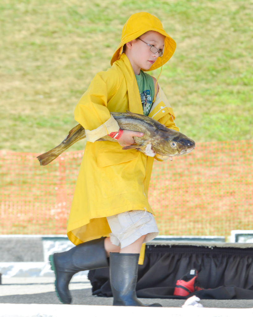 9 things you didn't know about the maine lobster festival - codfish carry