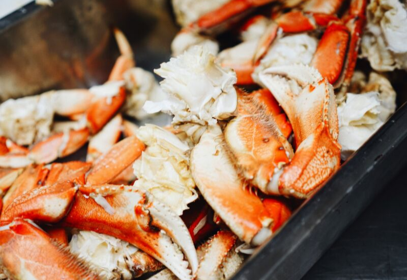 Best Restaurants in Camden Maine for Fresh Seafood