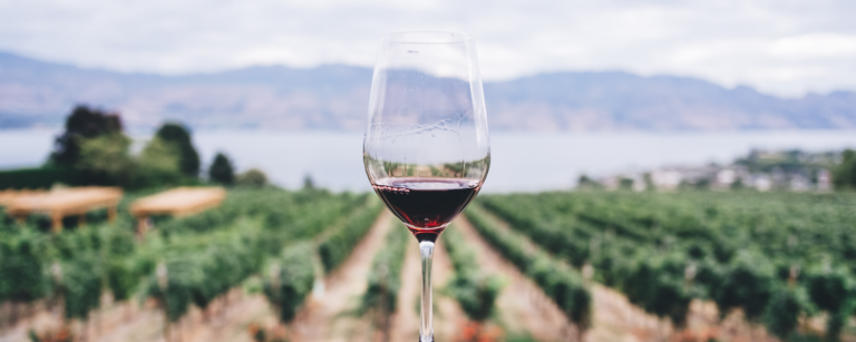 best vineyards and wineries in rockland maine and midcoast maine